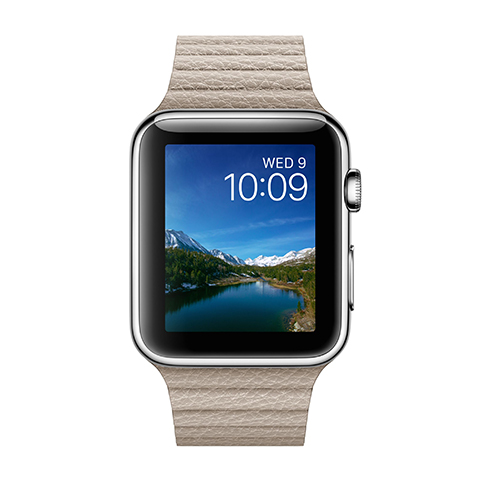 Apple Watch 42mm Stainless Steel Case with Stone Leather Loop - Large