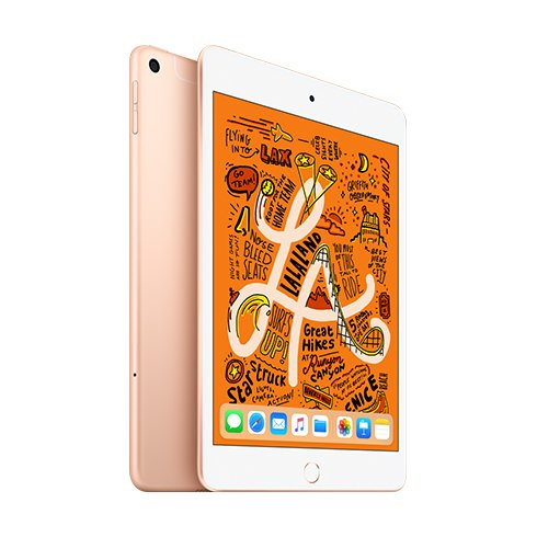 iPad mini Wi-Fi + Cellular 256GB Gold